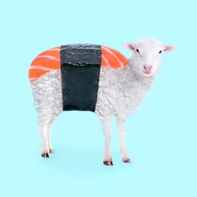 Paul Fuentes - Sushi Sheep